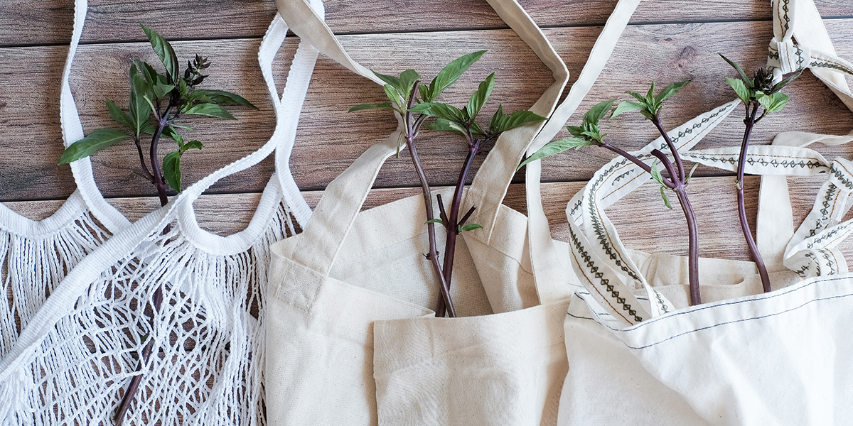 Bring your own bags to the grocery store