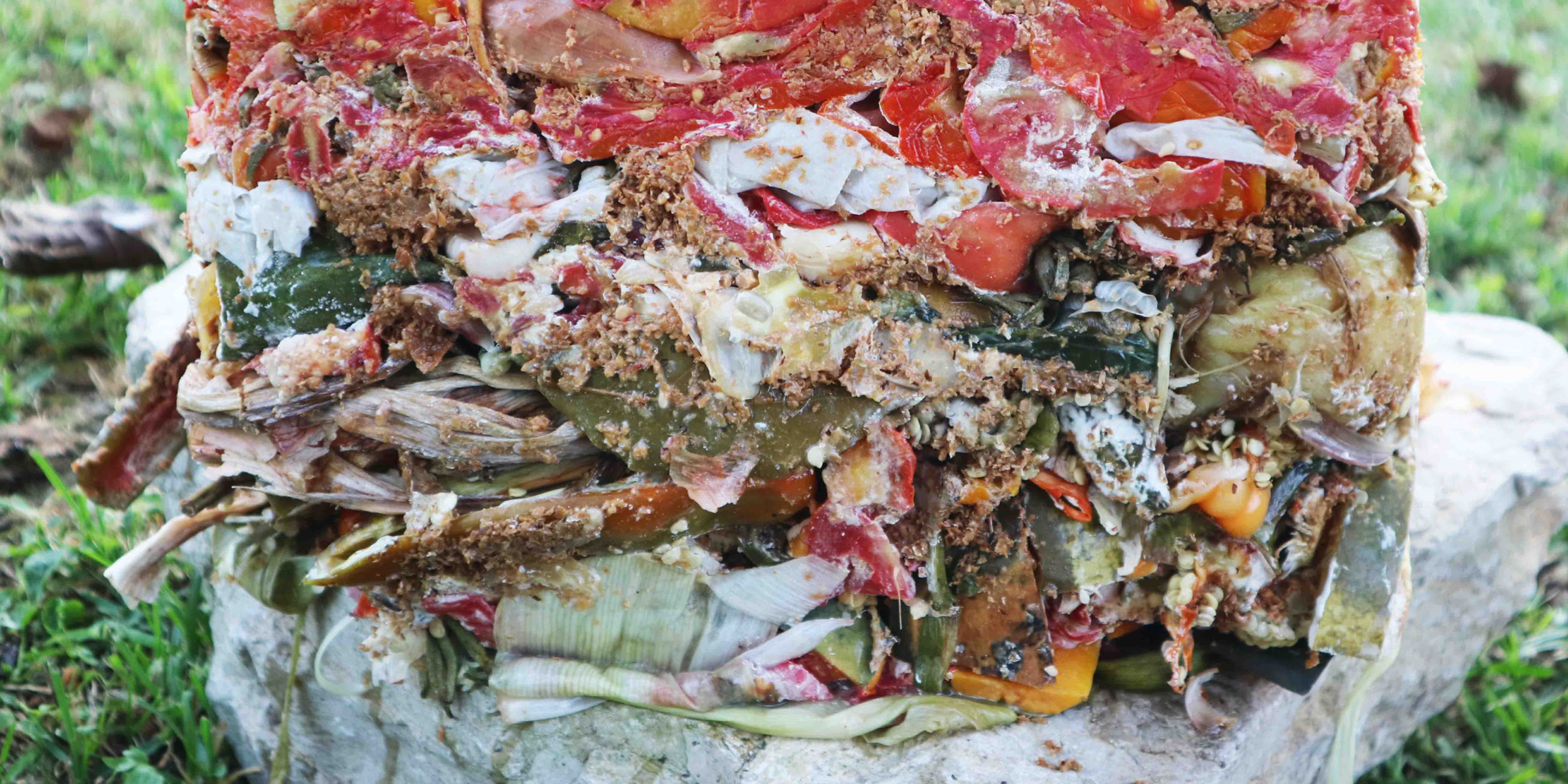 Composting for dummies Get first-class compost base