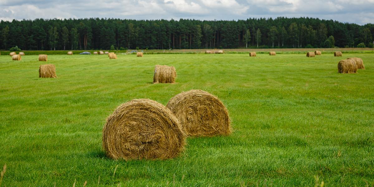 EM in Silage & Grassland Management