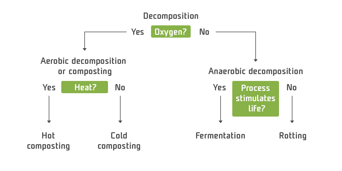 Factors Affecting The Composting Process - infographics