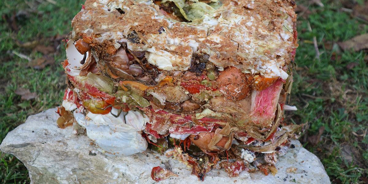 Fermented Bokashi mass