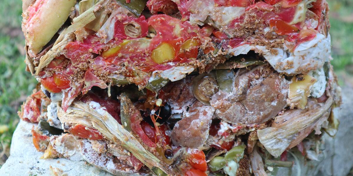 Fermenting bio-waste using EM technology