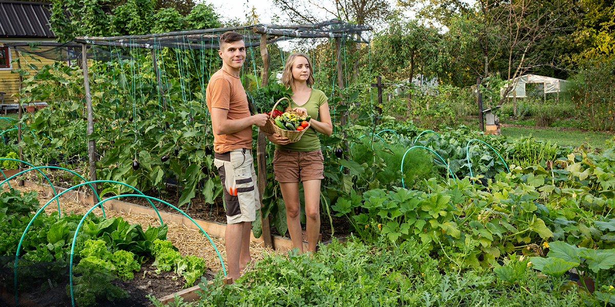 Gardening and home composting go hand in hand