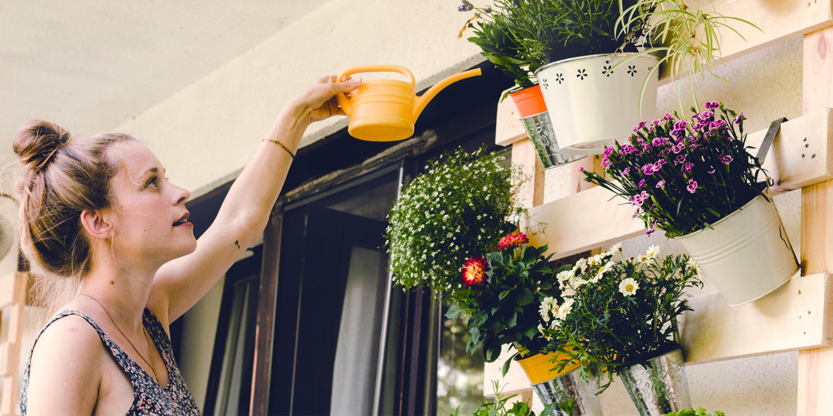 Grow your balcony garden plants on a vertical wall