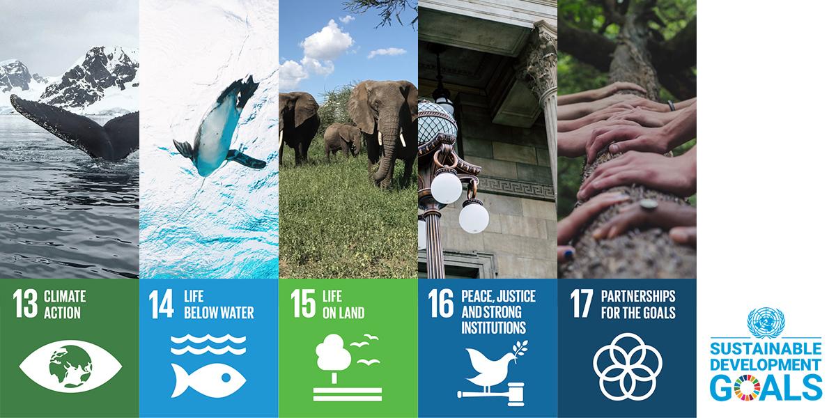 Other UN sustainable development goals
