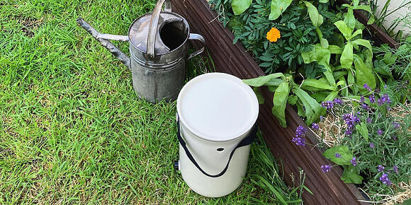 Positive effects of Bokashi fermentation liquid on plants