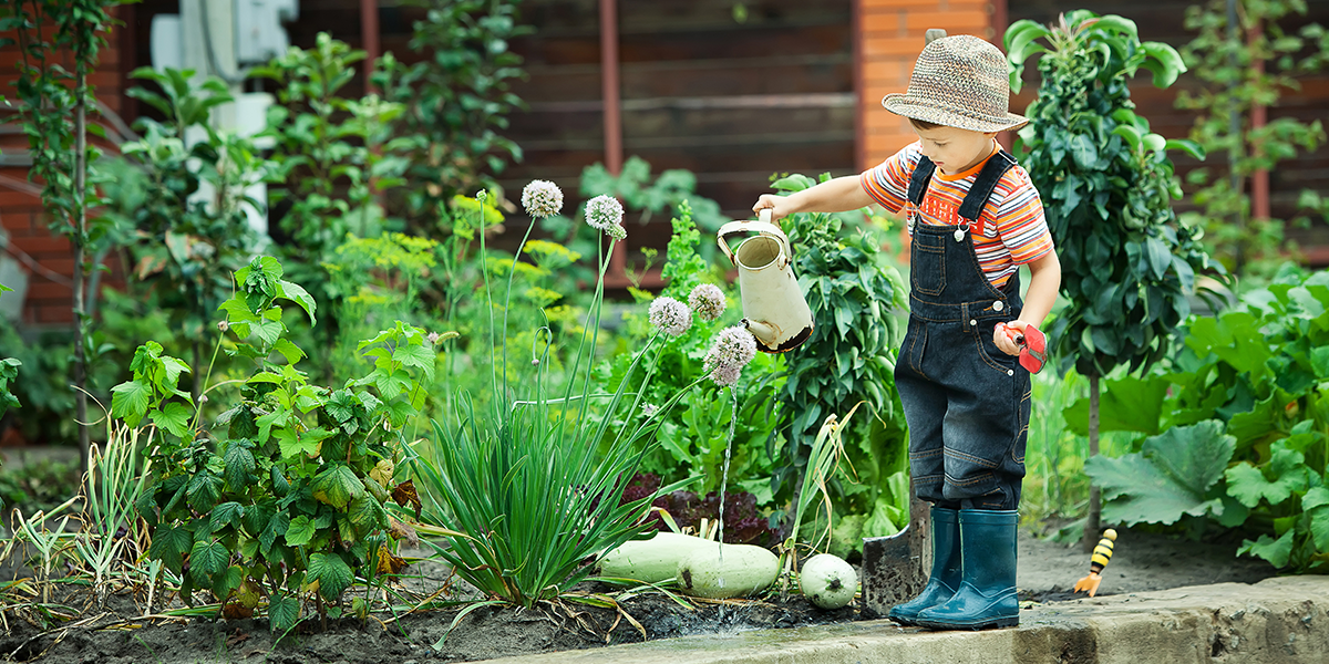 Urban farming is just one part of a nation-wide effort for food waste reduction in South Korea
