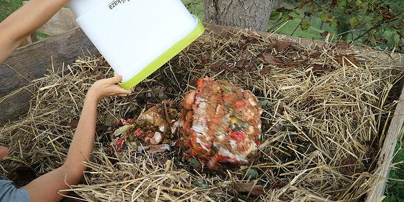 Why compost if in nature everything works normally?