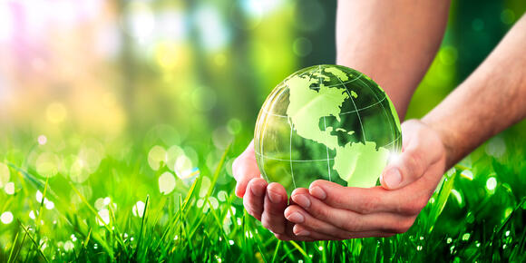 Why should every day be Earth Day?