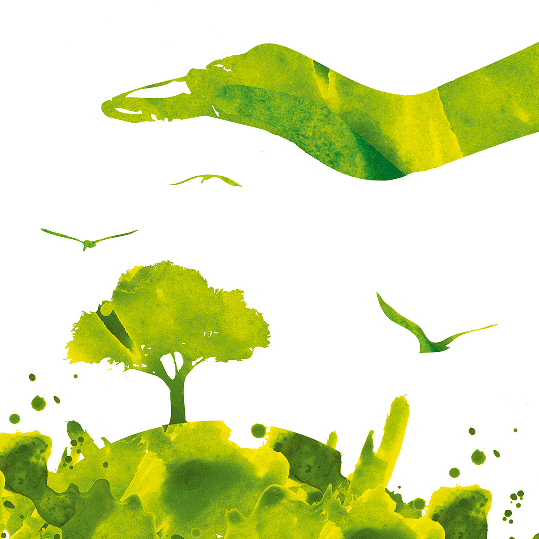 Sustainability is embedded in our brand's DNA