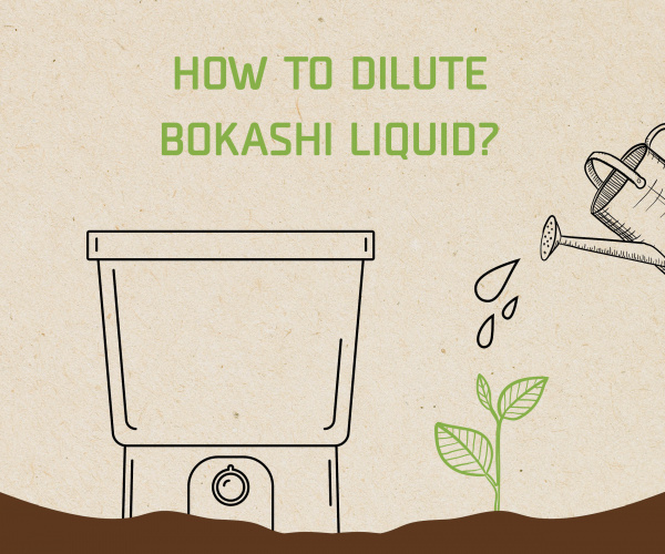 How to dilute Bokashi liquid